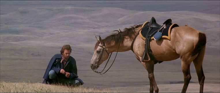 Kevin Costner in Dances with Wolves Beeld