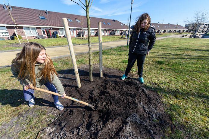 Zo had Boomfeestdag in mei eruit moeten zien: kinderen die een boompje planten. Door corona werd het feest uitgesteld, maar de bomen kunnen niet langer wachten: ze gaan nu alsnog de grond in.