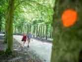 Rijk wil omstreden bomenkap bij Huis Doorn doorzetten: 'De beuken zijn niet gezond'