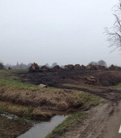 Gemeente Berkelland oppert verleggen gasleiding voor herplant grote bomen langs Spilmansdijk bij Beltrum