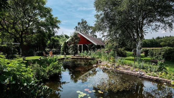 Een prijswinnende tuin voor alle zintuigen, waar je natuur ziet, hoort, ruikt en voelt