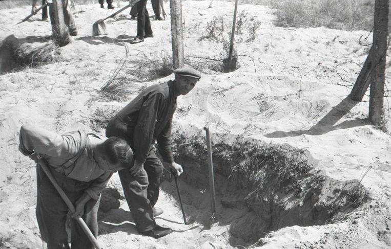 Pieter Kuijt na de oorlog bij de opgraving van een massagraf van gefusilleerde verzetsstrijders op de Waalsdorpervlakte. Beeld NIOD