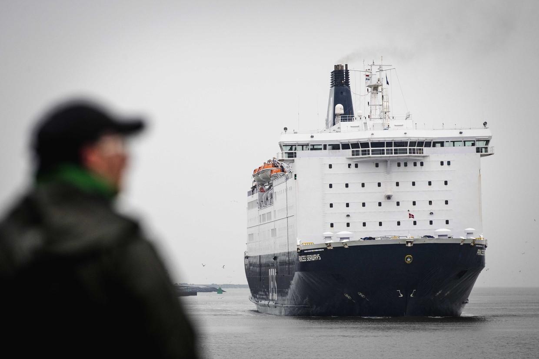 De ferry uit Newcastle komt aan in IJmuiden. Beeld ANP