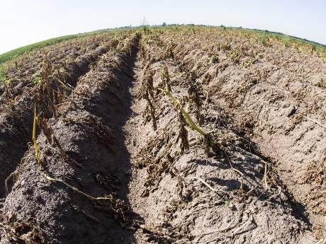 La Wallonie plus sèche que jamais