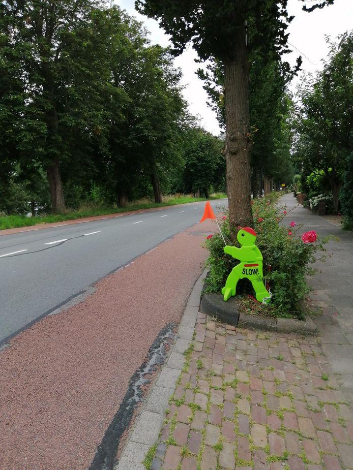Eén van de groene snelheidsvriendjes aan de Prinses Julianalaan in Maassluis.