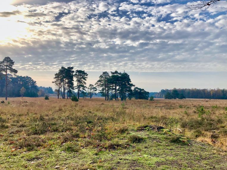 Landgoed Den Treek-Henschoten  Beeld Louel de Jong