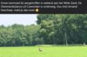 De ontsnapte emoe bleef niet onopgemerkt in Oosterhesselen.