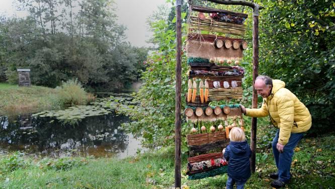 Hier vind je een kunsttuin met bijzondere doorkijkjes: 'Prachtig om te delen'