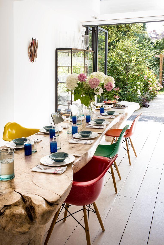 Kleurige Eames-stoelen omgeven het pronkstuk van het huis, een boomstronktafel uit Israël.De vaas is gevuld met pioenen en hortensia's uit de tuin. Beeld Paul Raeside