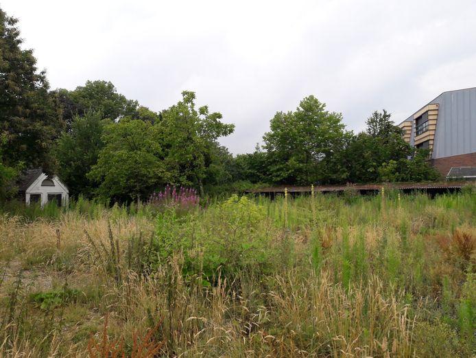 De achtertuin van de oude pastorie van Moergestel grenst aan het Antonius Huis aan de Raadhuisstraat