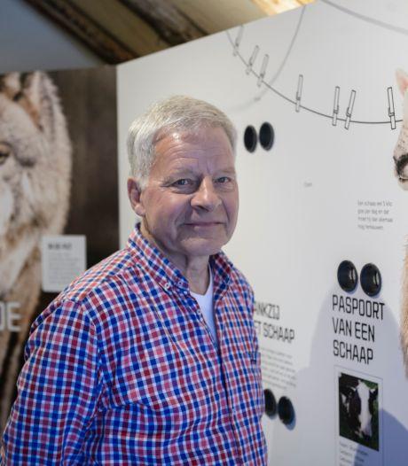 Al 300 lammetjes geboren in Haaksbergen, maar niemand mag komen kijken: 'Dit jaar beschouwen we ook als verloren'