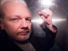 """Le Mexique offre l'asile politique à Julian Assange, les États-Unis """"extrêmement déçus"""" du verdict"""