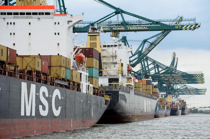 Containerschepen in het Deurganckdok in het Antwerps havengebied bij het Scheldedorp Doel.