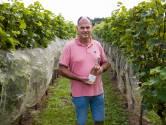 Nederland wijnland? 'Wie weet drinken we over tien  jaar Nederlandse chardonnay'