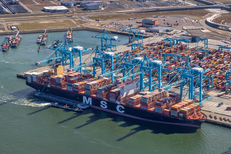 De MSC Rifaya was het eerste containerschip dat vastlag in het Suezkanaal dat in de haven van Rotterdam aankwam. Beeld Peter Bakker
