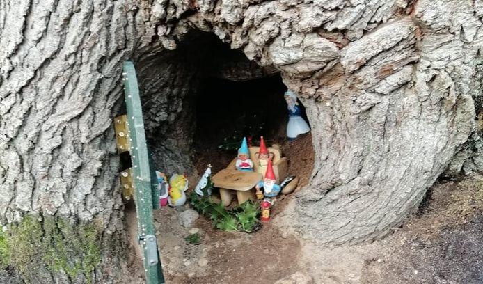 Zo zaten de kabouters in de holle boom op de Sint Jansberg.