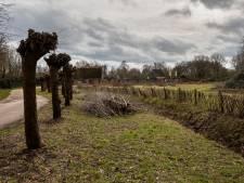 Petitie tegen plannen voor Eindhovens museum VONK oogst veel bijval, maar ook tegengas