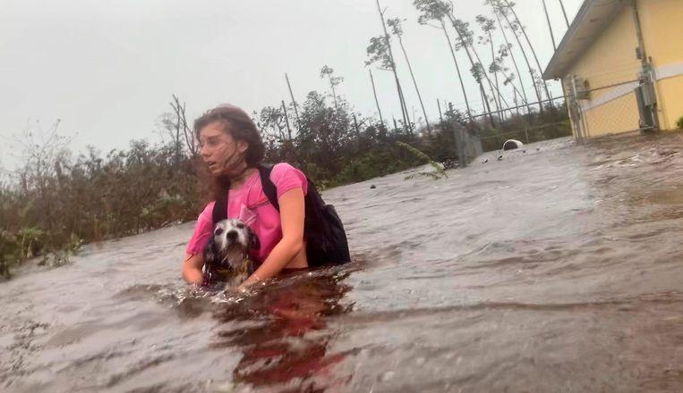 Een vrouw draagt haar hondje met zich mee terwijl ze door diep water waadt richting haar redders op de Bahama's. Beeld AP