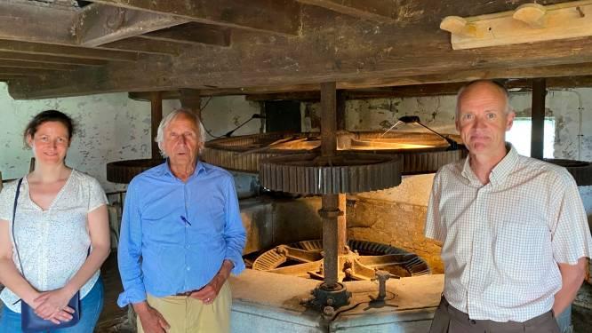 Eindelijk groen licht voor renovatie Ratmolen: minister Diependaele (N-VA) kent 330.000 euro subsidie toe (en er staat al een molenaar klaar)