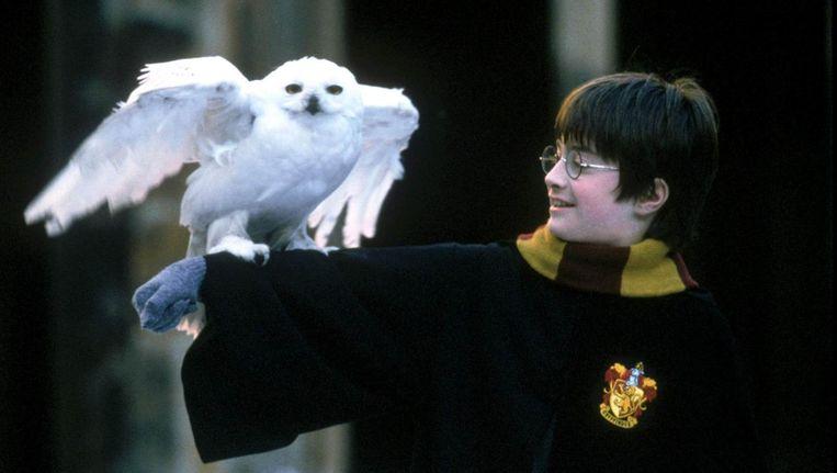 Harry Potter en zijn huisdier, een uil. Ook dieren uit die films zouden volgens PETA verwaarloosd zijn. Beeld Reuters
