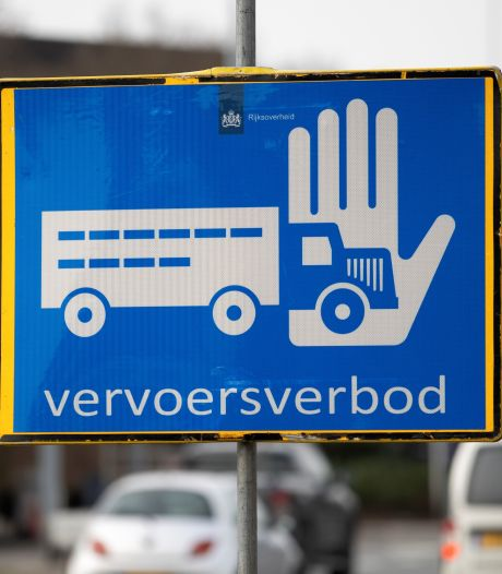 GemeenteBelangen Raalte wil lokale campagne over vogelgriep: 'Onwetendheid kan grote gevolgen hebben'
