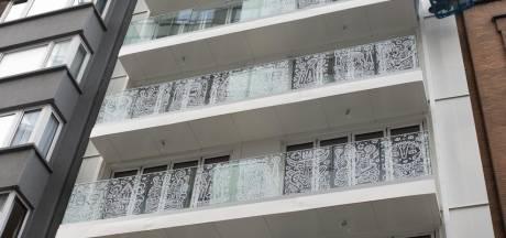 Quand l'art et l'immobilier s'unissent: voici le plus grand immeuble en bois du Benelux
