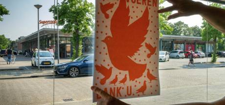 Omwonenden zijn duivenoverlast in Den Bosch zat