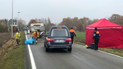 Bromfietser (36) komt om bij zware aanrijding met bestelwagen in Neerpelt