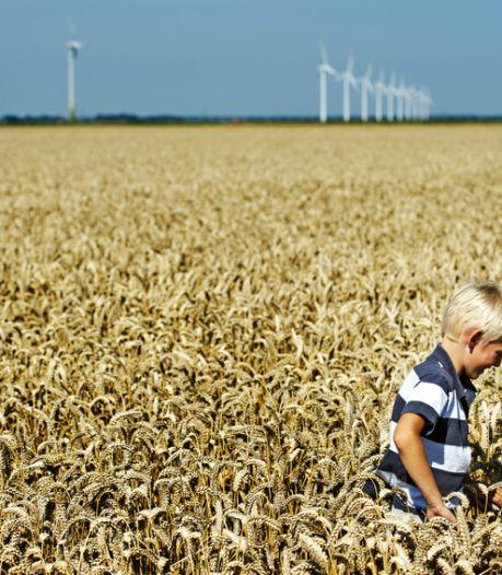 Opmerkelijke advertentie NL Energie: groene stroom is niet groen