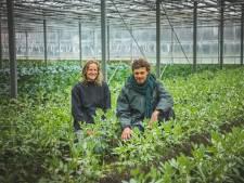 """Elise (30), Koen (39) en Benny (35) openen zelfplukboerderij aan de rand van Gent: """"Er staan nu al meer dan 245 gezinnen op de wachtlijst"""""""
