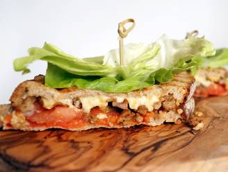 Tosti's met kapsalon, appeltaart en frikandel speciaal: in dit boek lees je er alles over