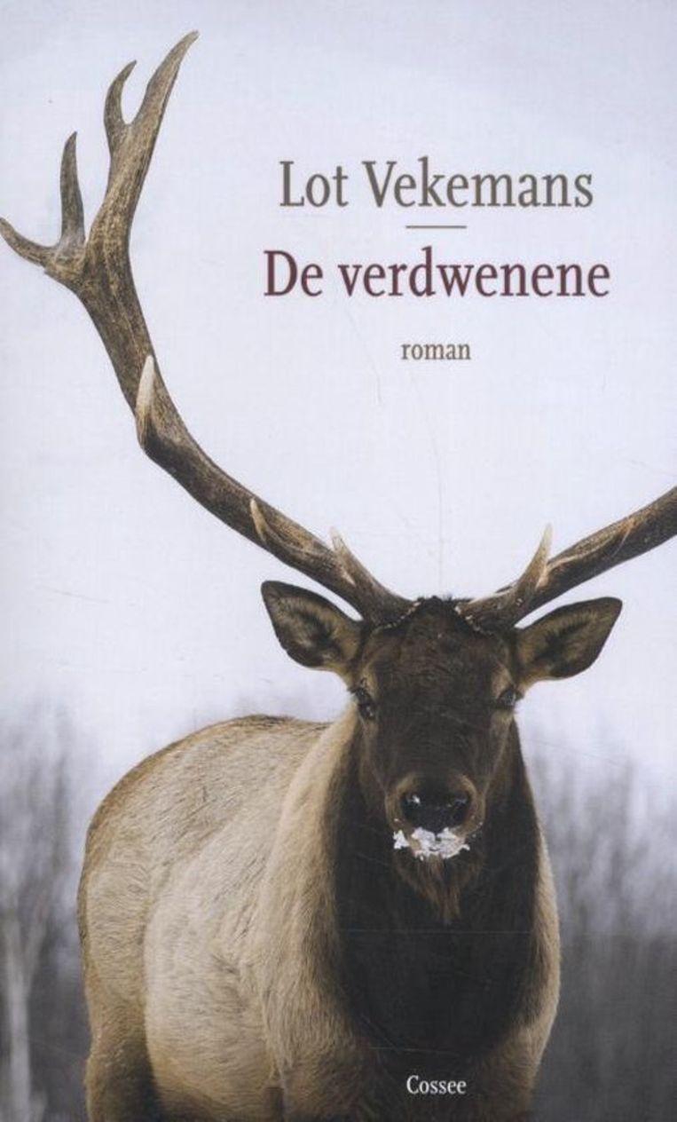 Lot Vekemans, 'De verdwenene', uitgeverij Cossee, 253 p., 22,99 euro.   Beeld RV