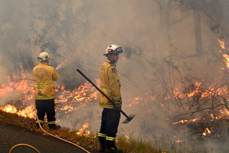Brandweerlieden aan het werk. Beeld AFP