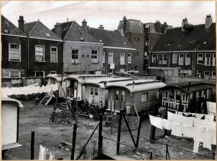 Uit het archief: het woonwagenpark tussen de Koningstraat en de Jacob Catsstraat in de Schilderswijk in 1953.