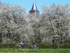 Steeds meer inwoners proberen 'Betuws landschap' te behouden