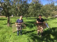 Teveel appels en peren? Geef ze weg aan de IJsselse cidermakers!