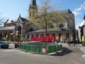 Net voor het terrasseizoen begint: operatie redding van boom op Sint-Nicolaasplein