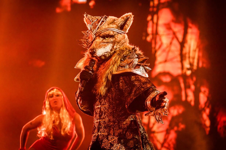 De Wolf in 'The Masked Singer'. Acht BV's getakeld in acht pakken, van de Otter over de Duiker en de Aap tot de Koningin.  Beeld VTM