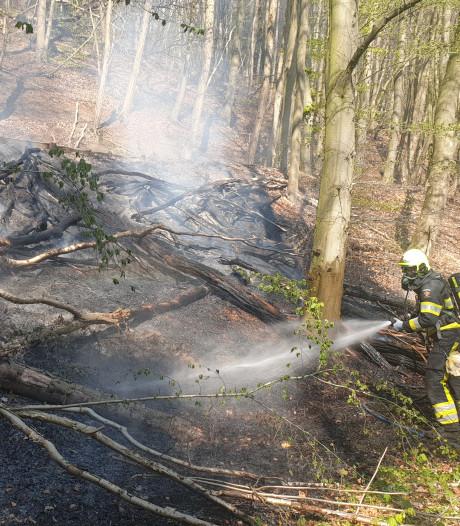 Bosbrand bij Plasmolen geblust: 260 vierkante meter beschadigd