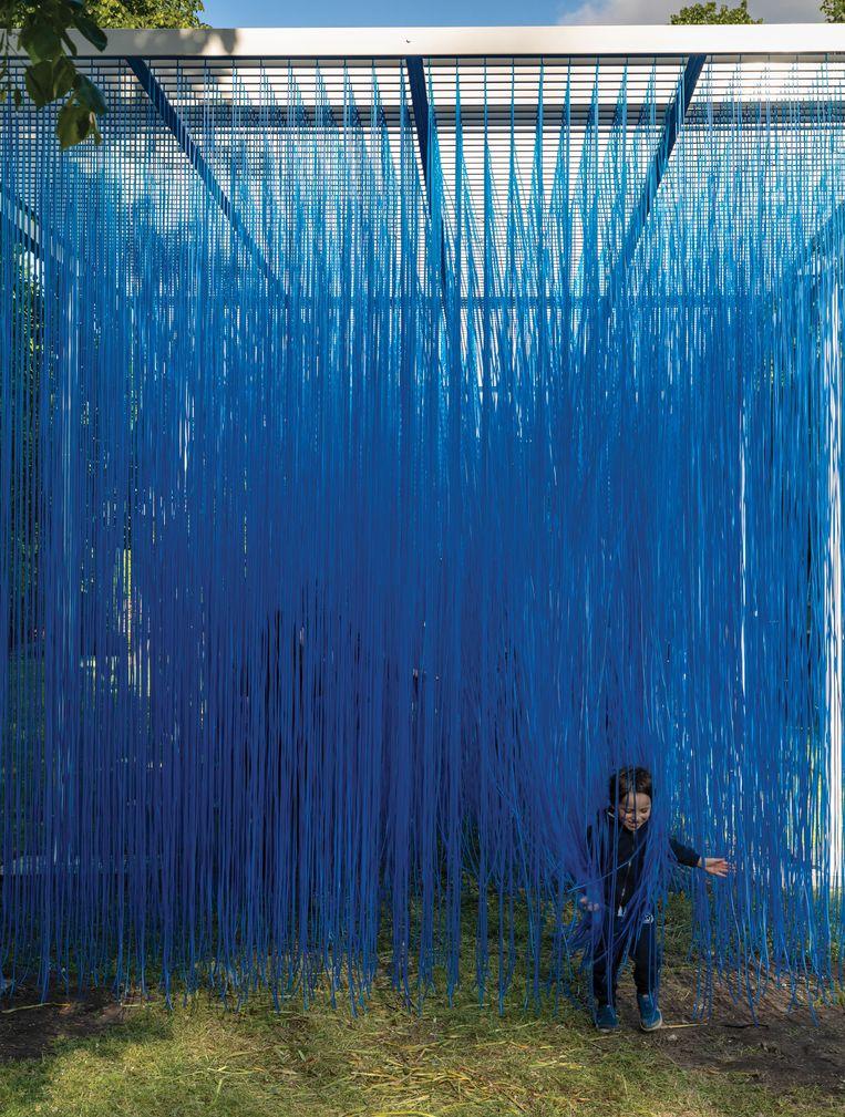 Jésus Rafael Soto Pénétrable BBL bleu, 1999. Beeld JW Kaldenbach