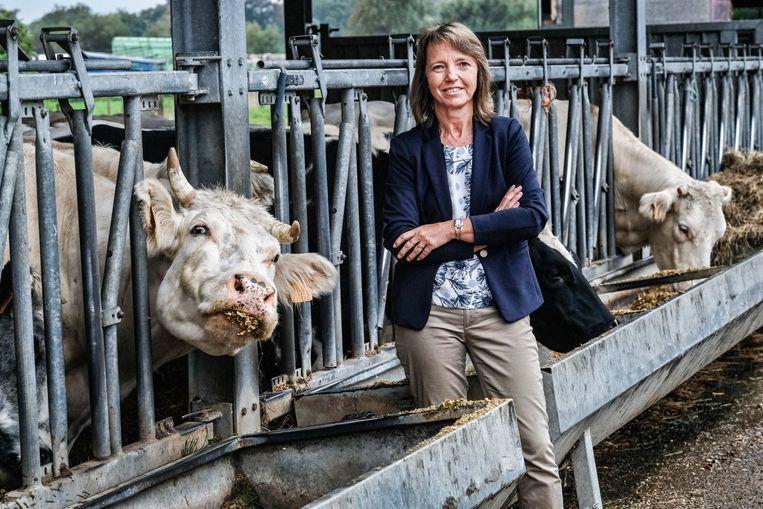 Sonja De Becker.  Beeld Tim Dirven