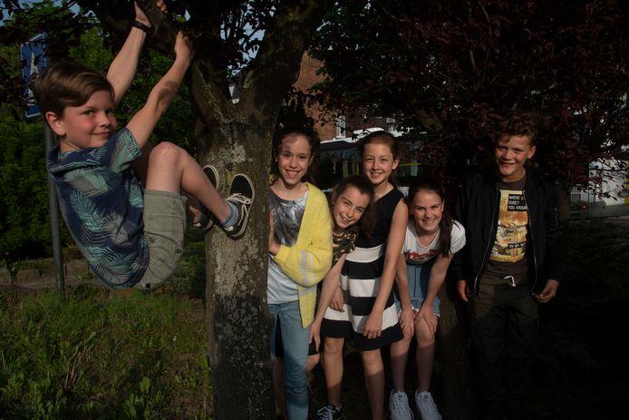 Guust, Ada, Fiep, Fien, Noa en Briek organiseren samen met hun ouders een benefiet voor drie goeie doelen in Wetteren.