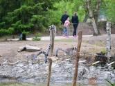 Beekse Bergen opent 'Edge of Africa': wandelen tussen ringstaartmaki's en pinguïns