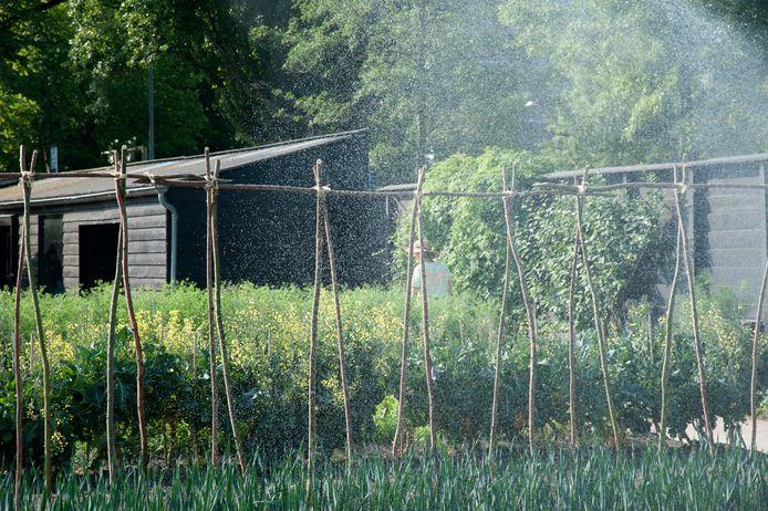 Je tuin besproeien is niet in alle gevallen de juiste oplossing.