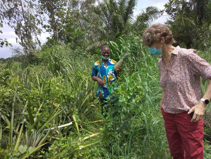 Wilma Frouke Baas op een ananasplantage in Benin.