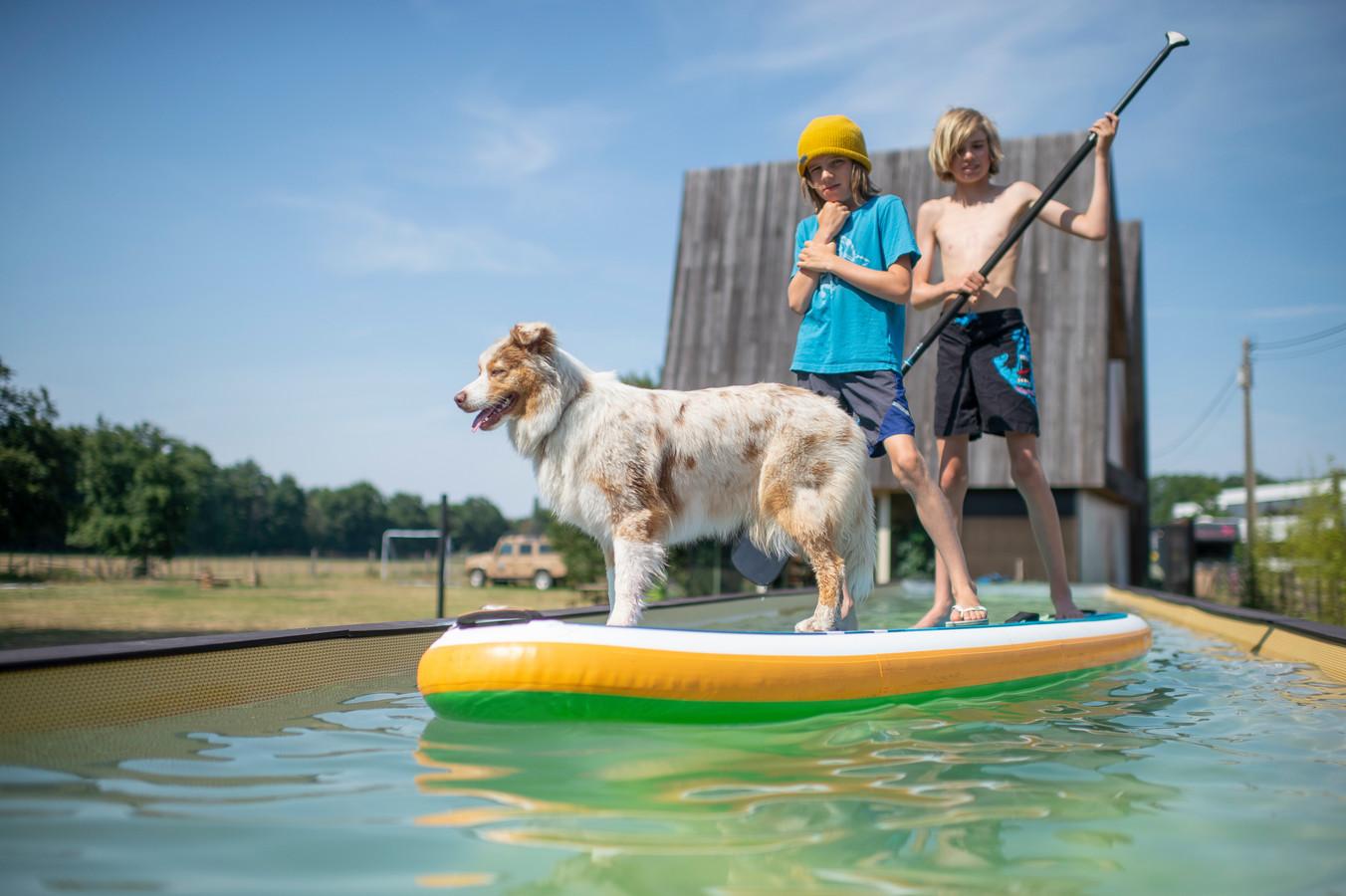 Yenno en Rio, de zonen van Wim, samen met hun hond op het zwembad in de tuin.