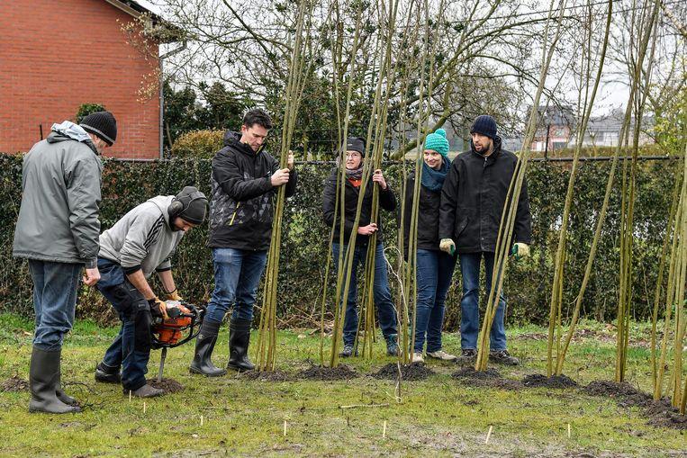 Ouders hielpen mee om wilgenhutten te bouwen op de groene speelplaats.