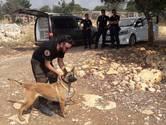 Graafactie in Turkse bergen waar Joey Hoffmann (21) verdween levert niets op