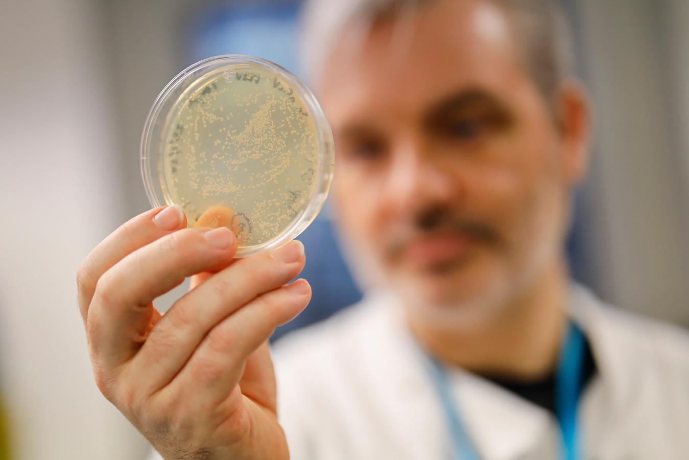 Dokter Paul McKay werkt in Londen aan een vaccin tegen het nieuwe coronavirus.