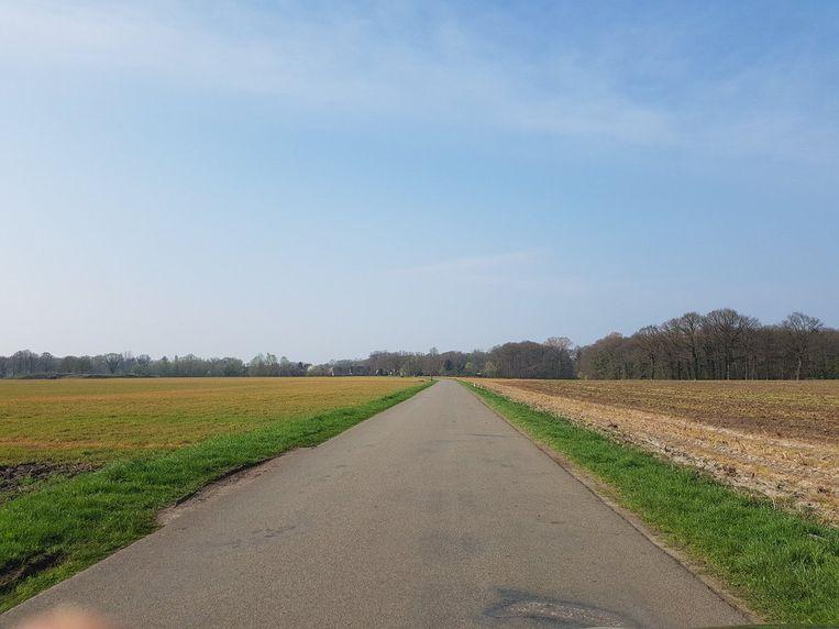 Met glyfosaat bespoten veld bij Winterswijk. Beeld @berglinde2